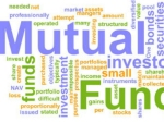 3 Large Cap Funds With Six-Month Return Of 35%; One-Year Return In Double Digits