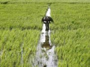 2 Recent Steps Taken By The Govt. To Boost Farmer Income