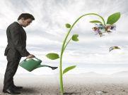National Fertilizers Jumps 20%; Upside Seen For Fertilizer Stocks