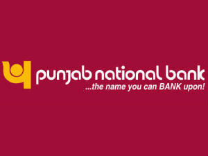 PNB may raise Rs 2,000 cr via bonds by FY12 end