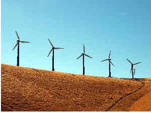 Suzlon Energy touches a life-time low