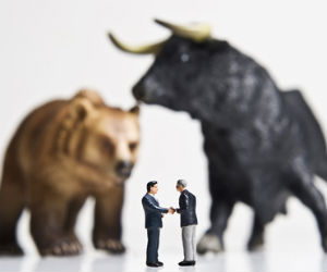 Bulls run riot; SP, reforms propel indices
