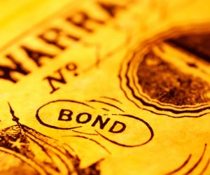 What are inflation indexed bonds?