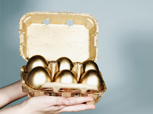 what are gold funds?