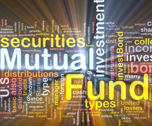 What is the difference between balanced fund and MIP?