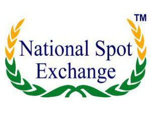 'Systematic failure' in NSEL functioning: Mayaram panel