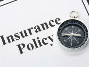 What is indemnity insurance?