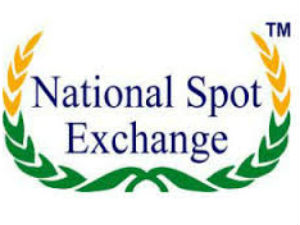 ED attaches Rs 75 cr assets in NSEL scam case