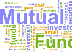 What are thematic funds?