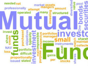 What are the different options an investor can have in mutual fund schemes?