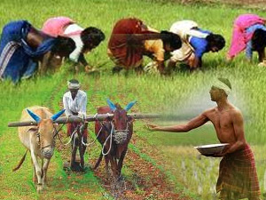 El Nino likely to impact farm production, food prices: Economic Survey