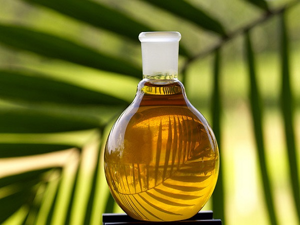 Govt Cuts Customs Duty By 10% On Crude Palm Oil From 27 Nov