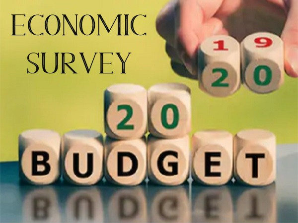 Economic Survey 2020: Expenditure on Social Services Increased by 1.5%