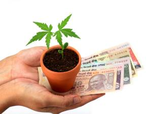 5 Best Small Cap Mutual Funds To Buy In India