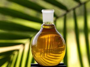 8 Best Edible Oil Company Stocks With Strong Fundamentals