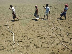 Farm Loan Waivers May Cost Rs 1.5-2.3 Trillion