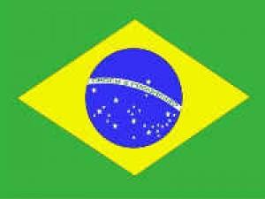 Hsbc Brazil Mutual Fund