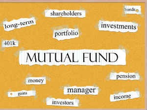 What Are Large Cap Funds