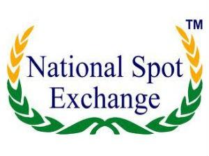 Financial Intelligence Unit Begins Probe Nsel Crisis