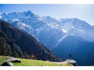 Indian Travellers Choose Plastic Money Bookings Survey