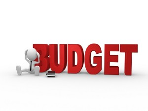 Budget Reactions