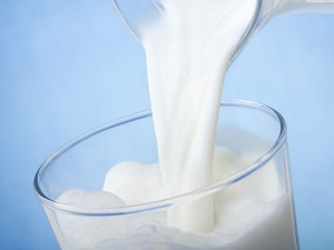 Dairy Stocks Plunge After Intra Week Gains From Farmer Prote