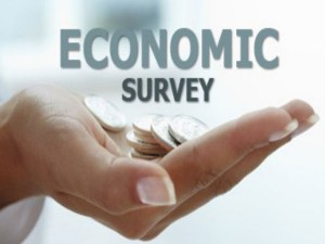 The One Big Key Takeaway From The Economic Survey
