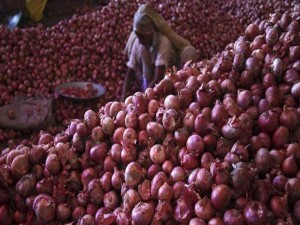 Onion Prices Soften On Govt S Stock Limits And Import Decision