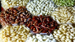Dubai Launches Agri Trading Platform To Boost Farm Imports From India