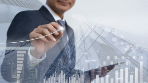 Best Moat Company Stocks In India