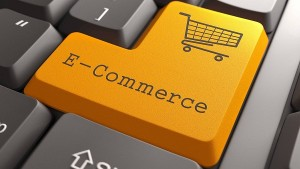 Many Large E Commerce Firms Have Blatantly Flouted Laws Of Land Goyal