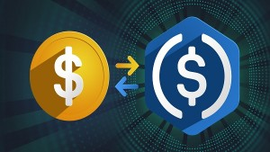 Best Cryptocurrency Stablecoins Backed By Assets For Safe Investments In India