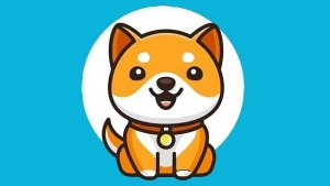 What Is Baby Dogecoin Should You Buy Baby Dogecoin Cryptocurrency